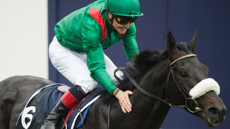 Harzand and Pat Smullen won the Epsom and Irish Derbys together