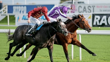 DONCASTER, ENGLAND - OCTOBER 28:  Ryan Moore riding Saxon Warrior (R) win The Racing Post Trophy Stakes from Roaring Lion (L) at Doncaster racecourse on October 28, 2017 in Doncaster, United Kingdom. (Photo by Alan Crowhurst/Getty Images)
