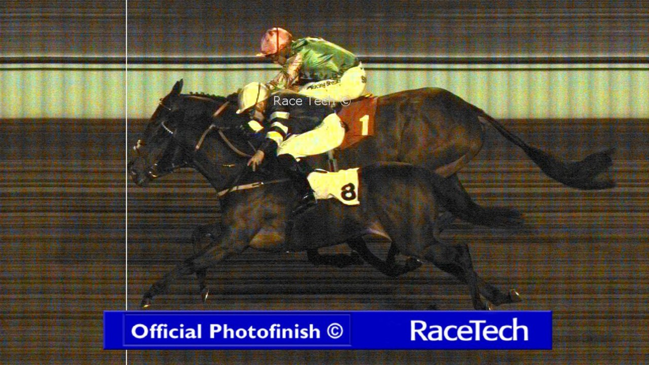 Racing post betting site results movie global betting and gambling consultants in cardiology