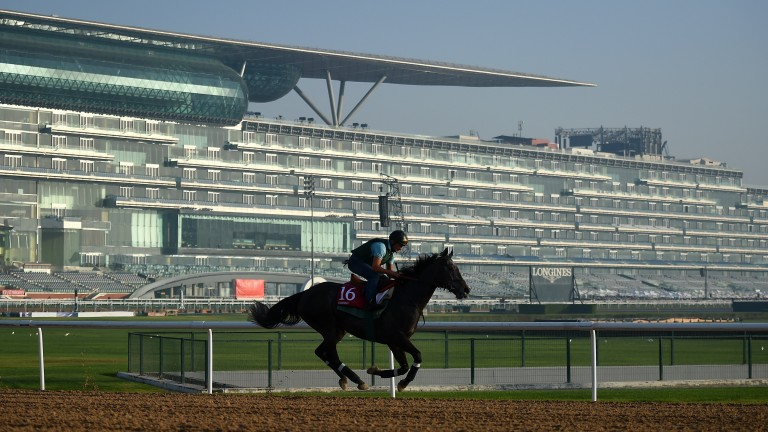 Vazirabad: has won the last two renewals of the race