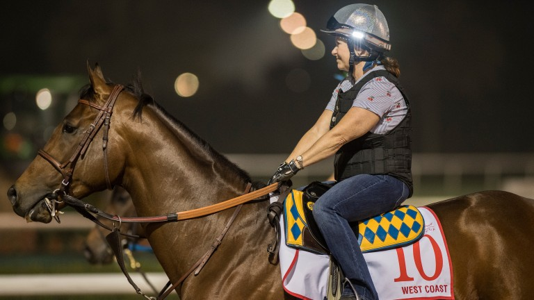West Coast (Dana Barnes): deserves to be favourite on form, says trainer Bob Baffert