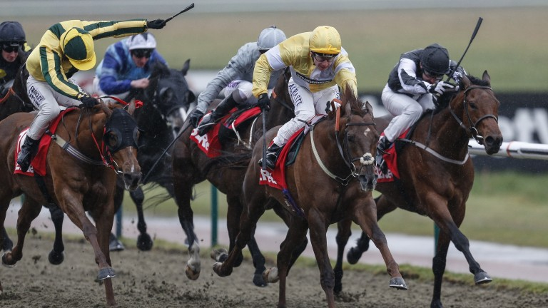 Corinthia Knight (yellow and white) keeps on strongly to win at Lingfield
