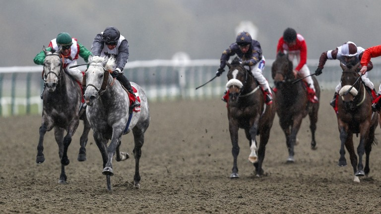 Lucky Team (grey, second right) storms home for a shock success in the Mile