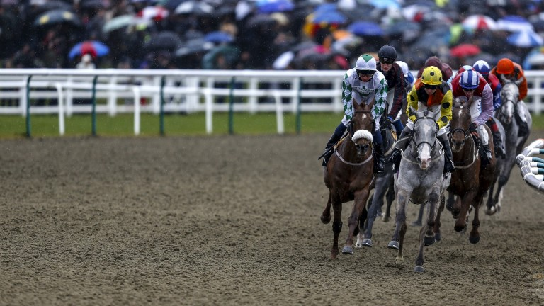 Lingfield: stages racing on Tuesday