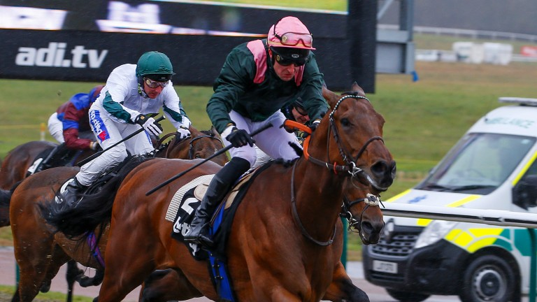 Light up the day: City Light is too fleet of foot for the rest as he skips away with the Sprint under Theo Bachelot