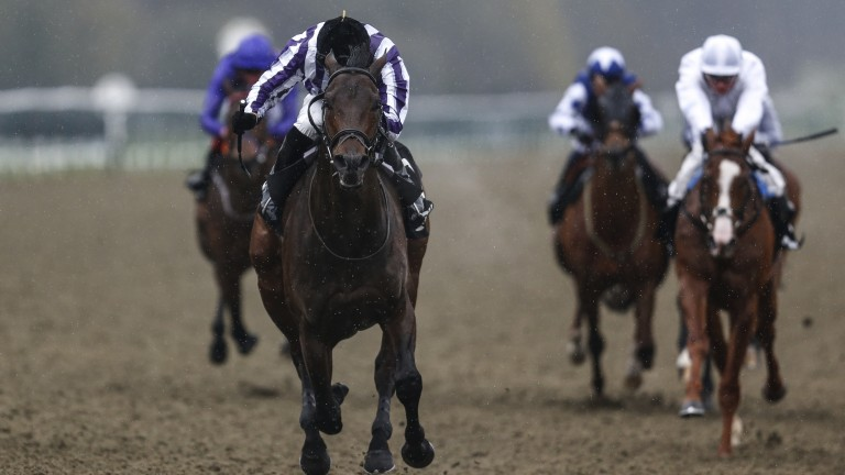 Classic Bond: Victory Bond and James Doyle are to good for their rivals in the Classic