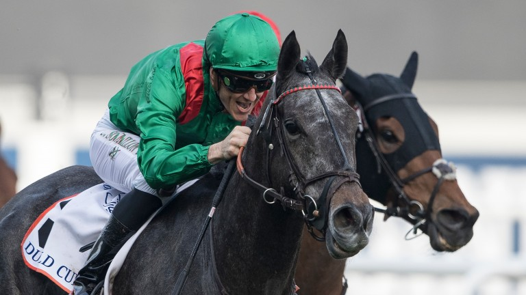 Better than ever: Vazirabad heads to the Gold Cup in the form of his life