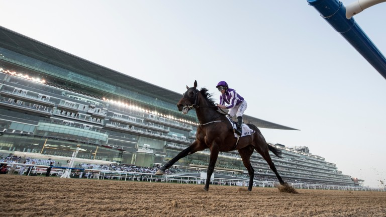 Mendelssohn: the UAE Derby winner's flight was delayed following a mix-up of documents