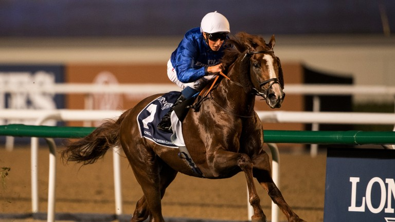 Pure power: Hawkbill storms to victory in the Sheema Classic