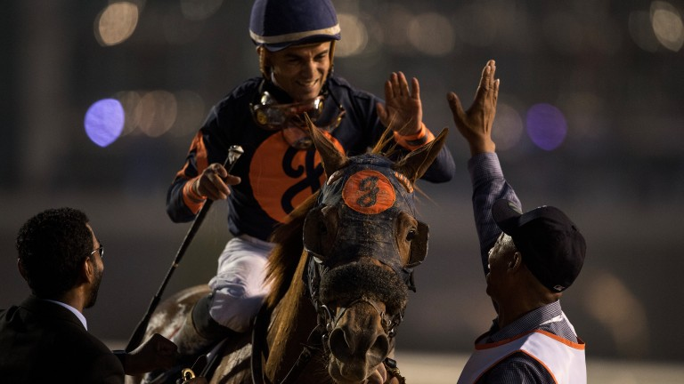 Happy days: Celebrations as Mind Your Biscuits wins the Golden Shaheen