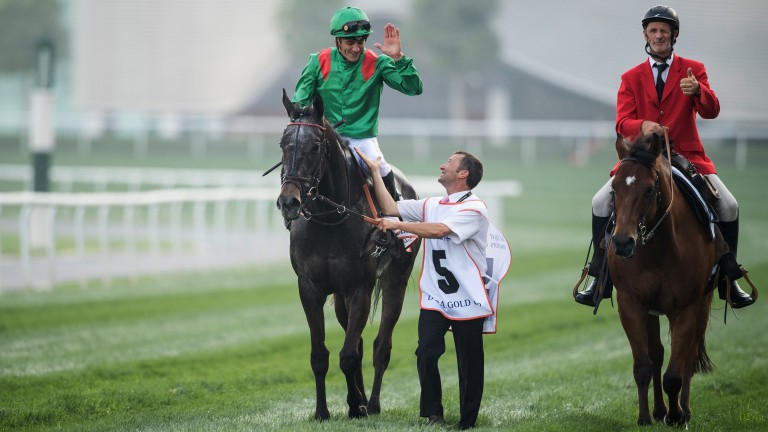 Three-timer: Vazirabad after landing the Dubai Gold Cup for the third year in a row