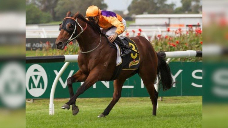 The Team Hawkes-trained Irukandji lands the Group 3 Schweppervescence at Rosehill on Saturday