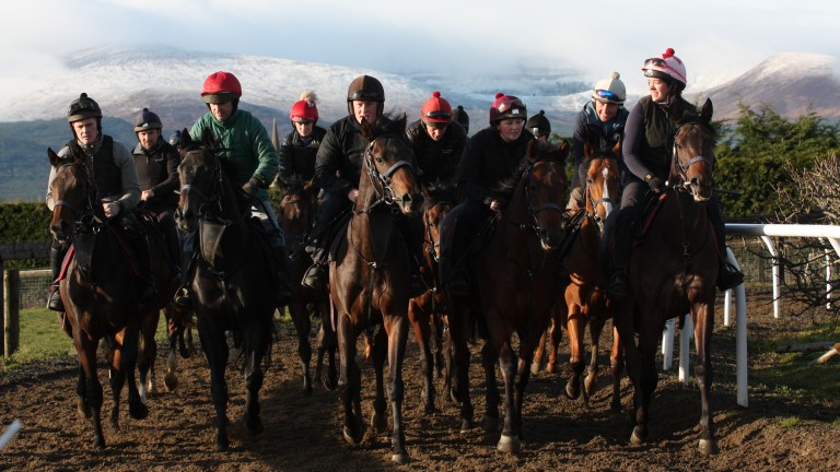 The Bansha House Stables breeze-up team out on the uphill gallop