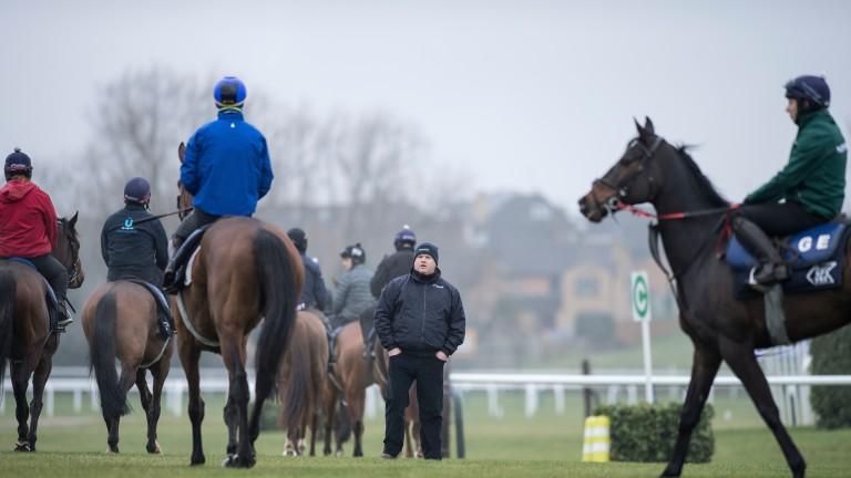 Gordon Elliott oversees work on the gallops at Cheltenham