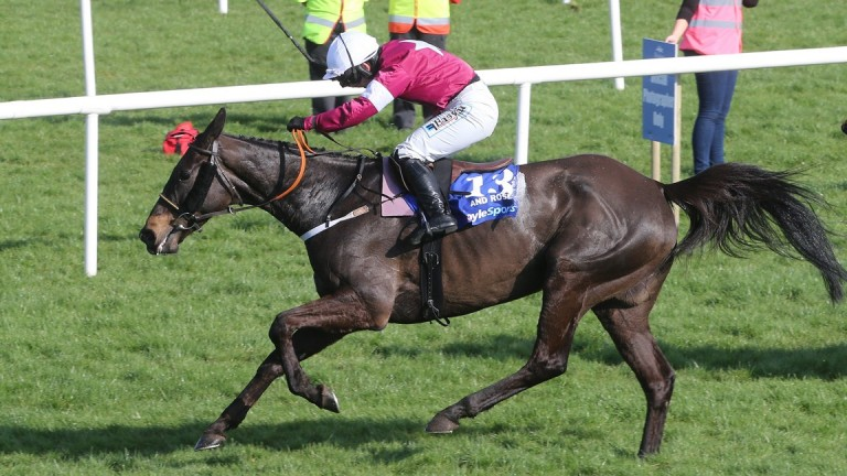 hunder and Roses and Katie Walsh power on to glory in the 2015 Irish Grand National