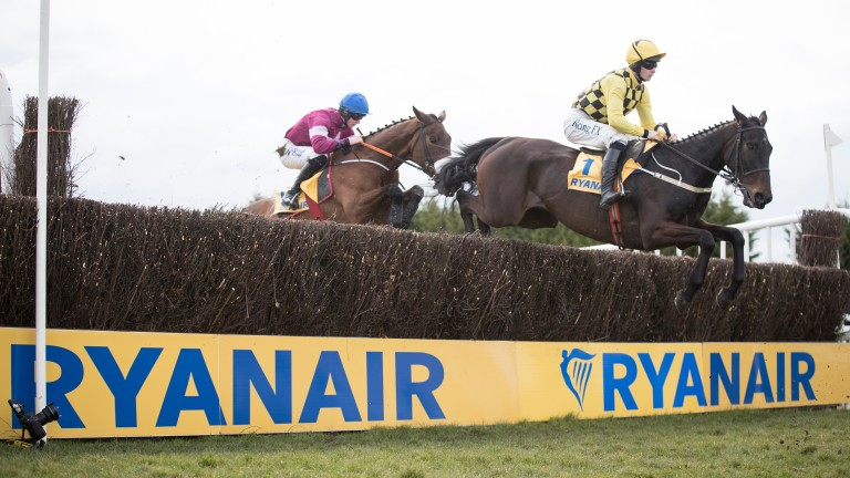Al Boum Photo: jumping a fence on the first circuit before winning the Ryanair Gold Cup Novice Chase at Fairyhouse
