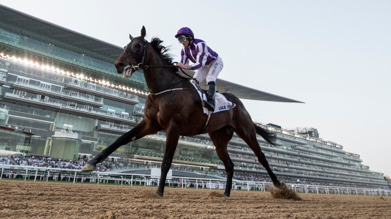 Image result for mendelssohn uae derby