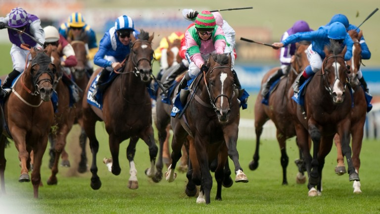 Dream Ahead (hooped cap,centre): The July Cup winner graduated from the 2010 Doncaster Breeze-Up Sale
