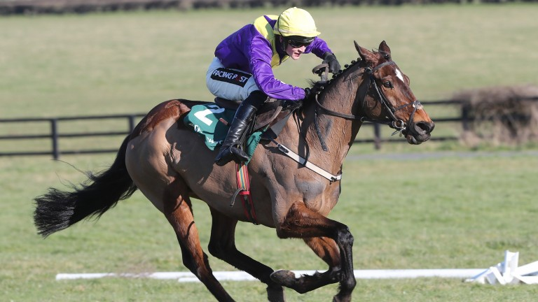 Uradel: potentially the best of eight Willie Mullins runners