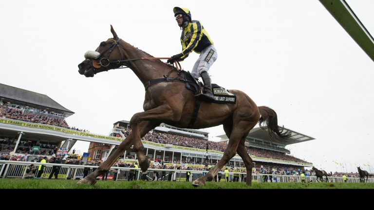 The Last Samuri: Grand National second retired after disappointing at Newbury