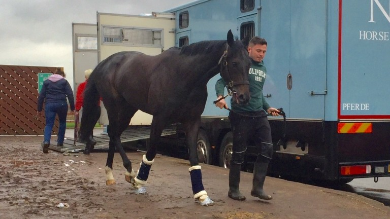 Dukhan arrives at Chelmsford for his workout on Tuesday