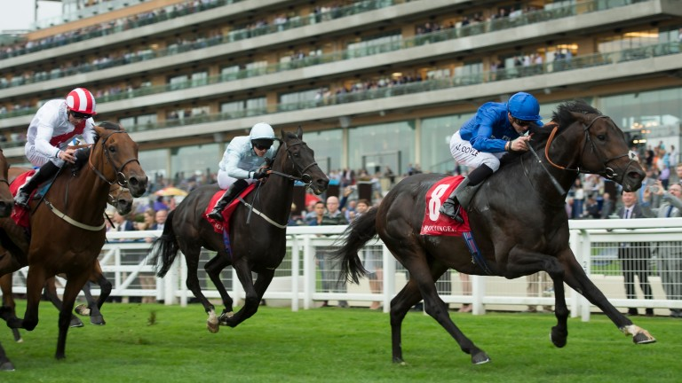 Great Order (James Doyle) scores at Ascot in 2016