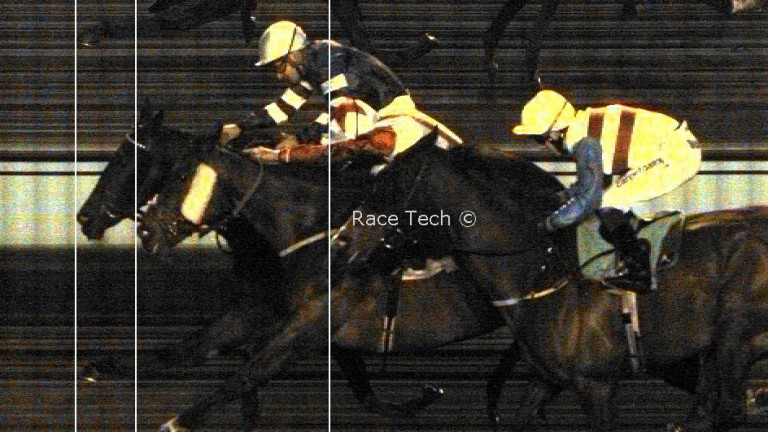 Bird For Life (far side) gets the verdict in a photo-finish at Kempton