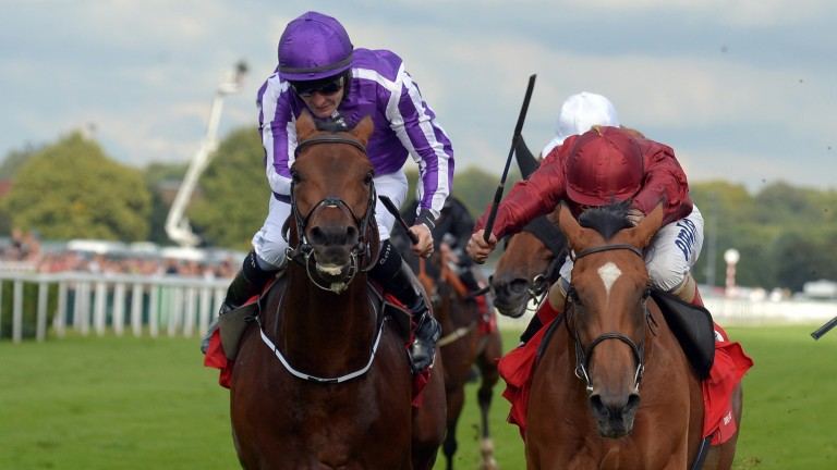 Bondi Beach: involved in a dramatic finish to the St Leger