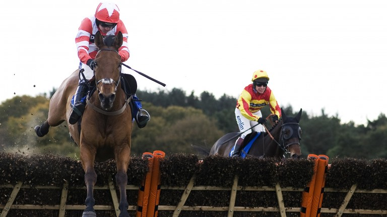 Down memory lane: Atlantic Roller and Ruby Walsh beat Gas Line Boy (right) over hurdles at Exeter six years ago