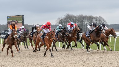 Lexington Place (left) finishes an unlucky-in-running fourth at Newcastle