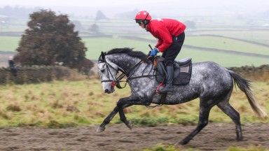 Grand National candidate Vintage Clouds on the all-weather gallop