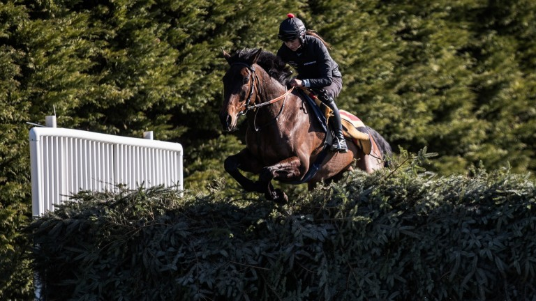 Bryony Frost puts Milansbar through his paces on Thursday