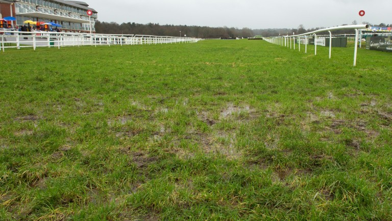 Meetings sunk: both Limerick and Naas have been deemed to wet to race
