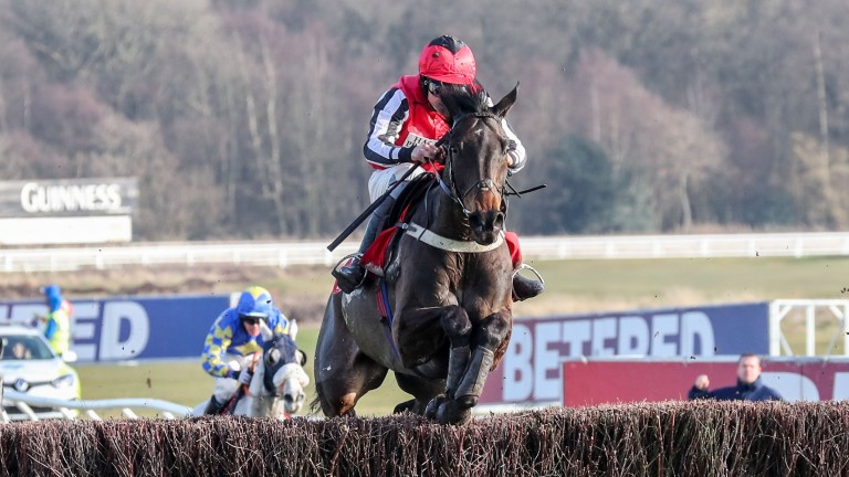 Baywing: won six of his 21 starts, including the Eider and Grade 2 Towton Novices' Chase
