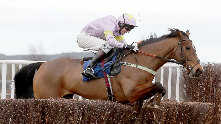Takingrisks: the winning chaser reverts to hurdles at Kelso on Saturday