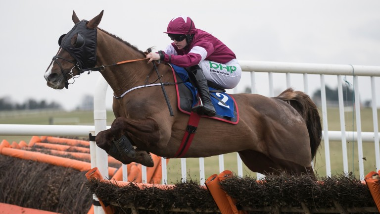 Blow By Blow and Rachael Blackmore winning the Grade 3 Michael Purcell Memorial Novice Hurdle at Thurles