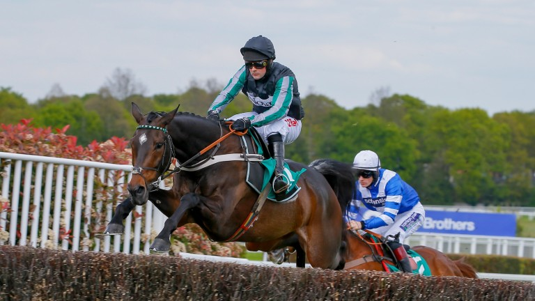 Altior was a devastating winner of last year's Celebration Chase