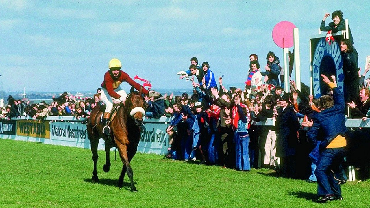 Image result for aintree horse racing
