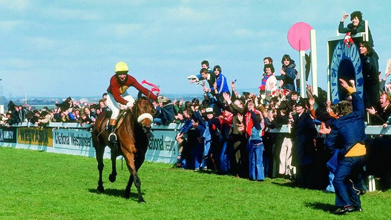Red Rum wins the 1977 National but the Aintree legend also made his racecourse debut at Liverpool on the Flat