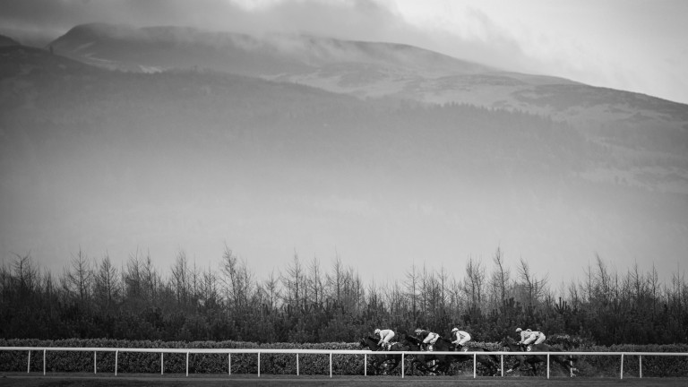 The background of the Cooley Mountains at Dundalk Stadium