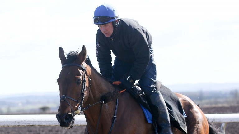 Grand National hope Seeyouatmidnight is put through his paces