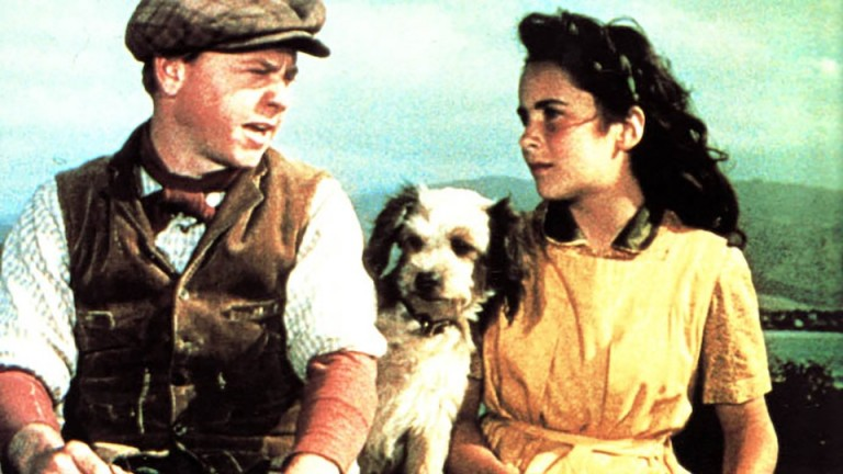 Elizabeth Taylor in National Velvet: her character Velvet Brown was disqualified from the race