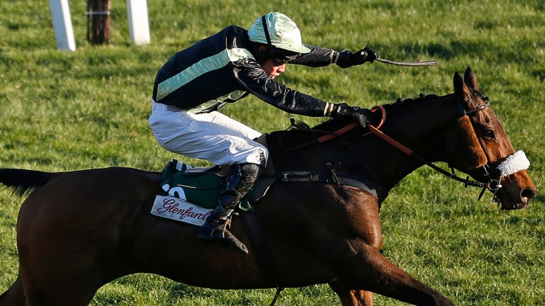 Urgent De Gregaine: one of three runners for the French trainer at Cheltenham