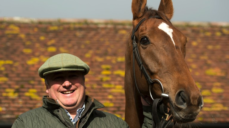 Proud trainer: Paul Nicholls and Silviniaco Conti pose in the sunshine at Ditcheat