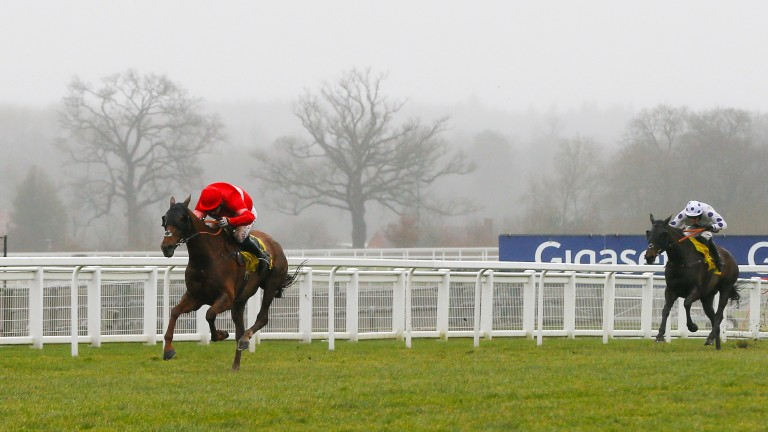 Far too good: Silviniaco Conti wins his seventh and final Grade 1 in great style by taking the 2016 Ascot Chase