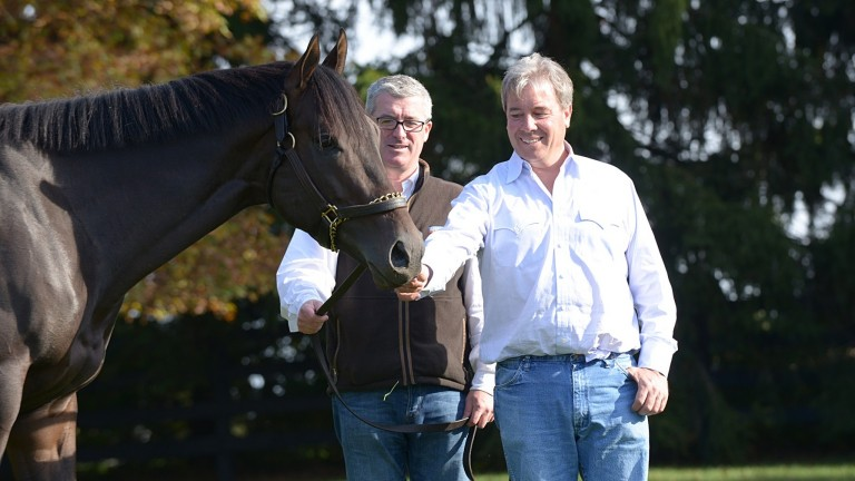 Wesley Ward handing No Nay Never over to Coolmore's David O'Loughlin