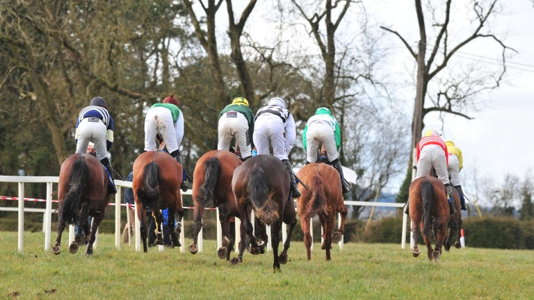 Leadng British and Irish jumps owners are often prepared to pay hundreds of thousands of pounds to secure the best prospects from the point-to-point field