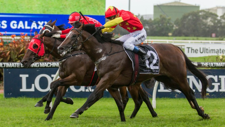 Russian Revolution (2) on his way to winning The Galaxy at Rosehill this year