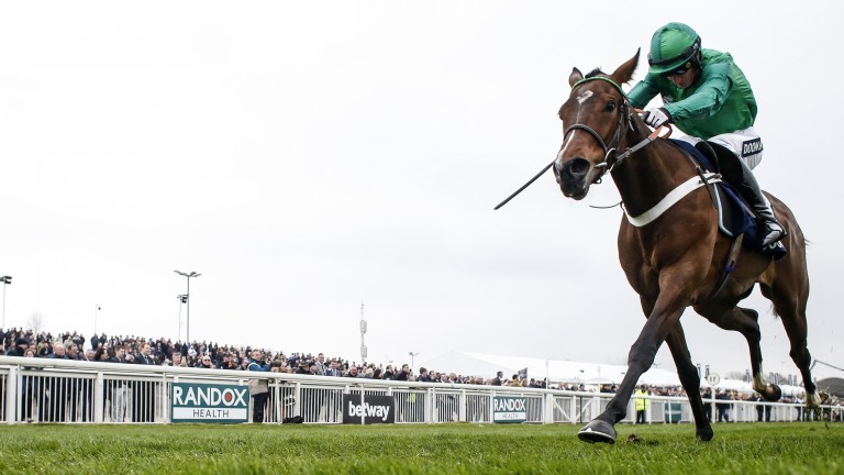 We Have A Dream: returns to action in the Elite Hurdle