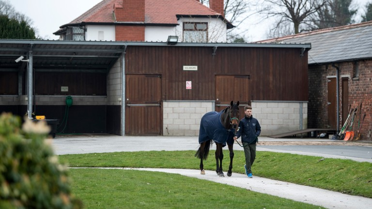 Aintree's racecourse stables